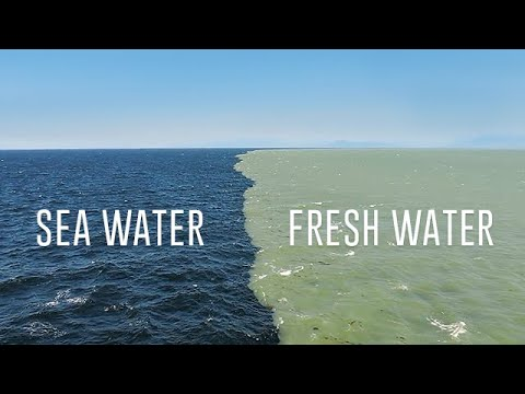 Fresh Water Meets Sea Water – Boundary Explained