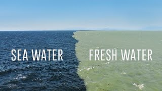 Fresh Water Meets Sea Water  Boundary Explained