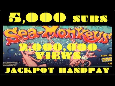 Sea monkey slot machine
