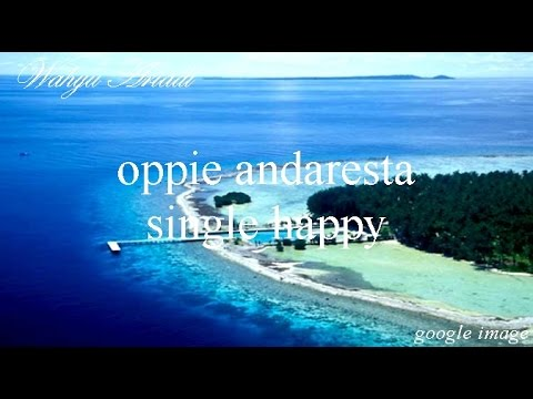 oppie andaresta - single happy  (electric guitar)