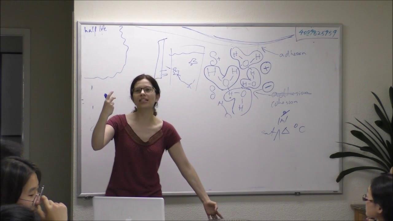 USABO – SpringLight Education Institute