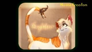 Коты Воители - Яролика (Котёнок в колодце ).