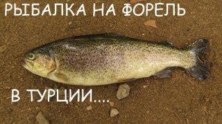 Рыбалка на форель в Турции. ( 21 сентября 2013 г. )