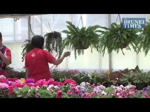 Brunei Agro Technology Park