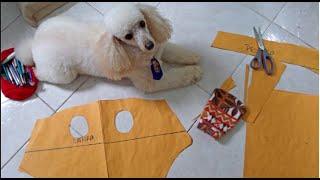 Molde de roupa para seu Pet por Alana Santos