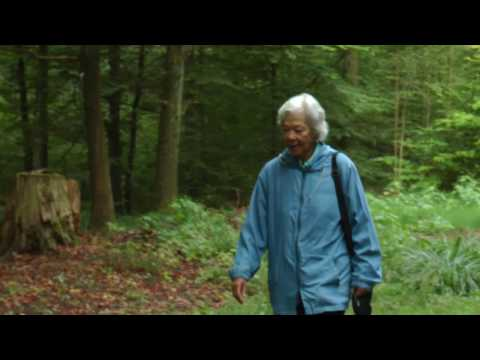 Jungians Speaking- a series of 9 films with Jungian analysts from ISAP Zurich