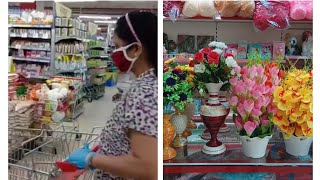 Going to grocery store| Vipra's vlogs | vlog no.  6