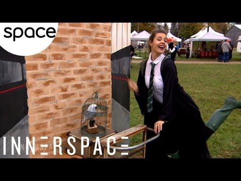InnerSpace: Festival of Wizardry