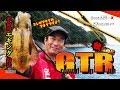 【秋の爆釣編】シーズン序盤はアタリ連発!エギング界の最先端釣法「GTR釣法」でアオリイカ捕獲!