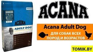 Сухой корм для собак Acana Adult Dog купить в Минске - Акана для взрослых собак всех пород TOMIK.BY