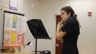 Scherzino flute solo by Andersen