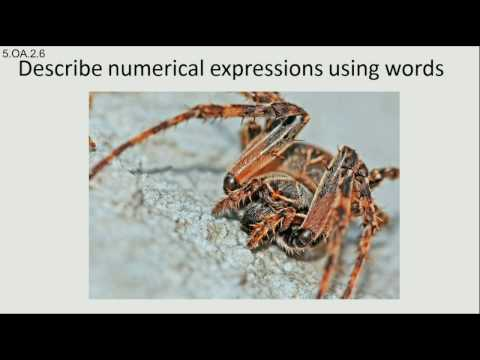 Describe mathematical expressions with words 5.OA.A.2