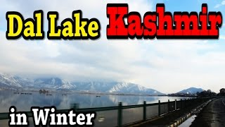 KASHMIR DAL LAKE in Winter (Spectacular View) - Probably You Have Never Seen