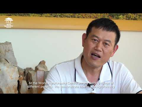 A chat with Prof.  Xu Jianchu on land restoration in China