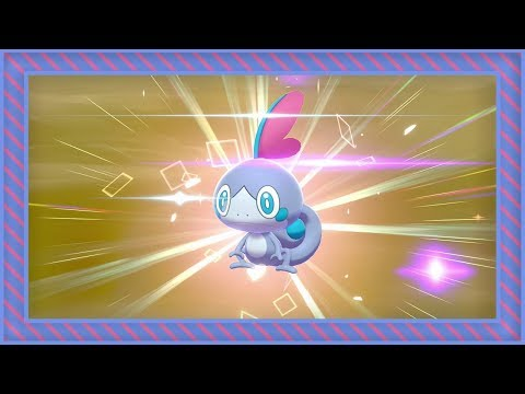 [LIVE] Shiny Sobble Hatches After 1,617 Eggs In Pokemon Sword [Full Odds]