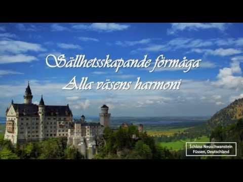 Ode to joy (Anthem of Europe)