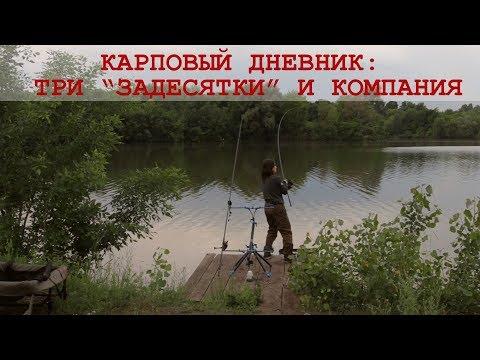 Секреты рыбалки на карпа: тактика, прикормка, оснастки. Видеодневник #1