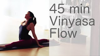 Hatha Yoga Flow Free Vinyasa Yoga class With Fightmaster Yoga