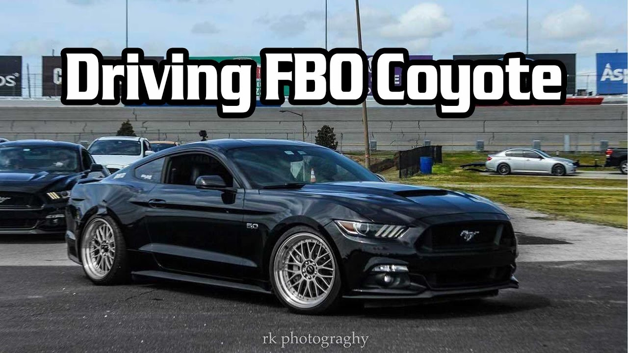 Ford Mustang Gt Convertible 2017 >> Reactions to Driving FBO 2015 Mustang GT LT, GT350 Intake, PMAS - YouTube