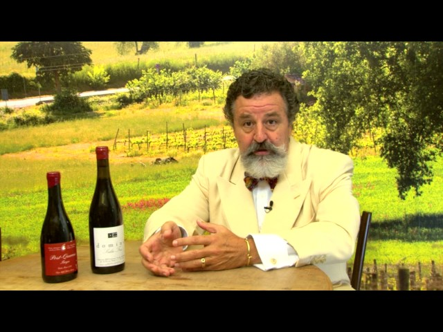 Wine Actor's  2° Temporada - Colares