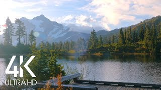 8 Hours of Birds Singing on the Lakeshore and Water Sounds - Relaxing Nature Sounds - Mount Shuksan