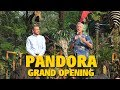 Pandora The World of AVATAR GRAND OPENING Walt Disney World