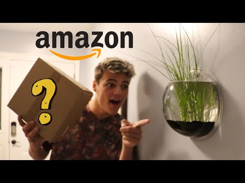 BUYING Worlds Smallest WALL AQUARIUM!! *DIY*