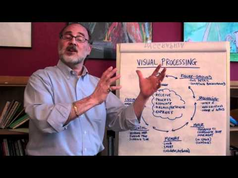 What Is Visual Processing?