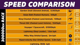 Speed Comparison || Speed || Racing || Fast