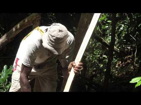 Making a bow and arrow / Mekem boanara (Bangir, Malakula, Vanuatu)