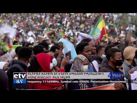 Residents of Addis Ababa rally to show support to the Defense Force , celebrate progress with GERD.