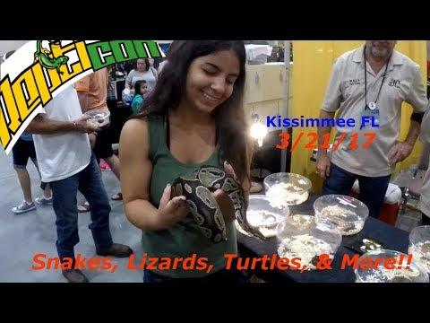 Kissimmee FL Repticon Expo 10/21/17