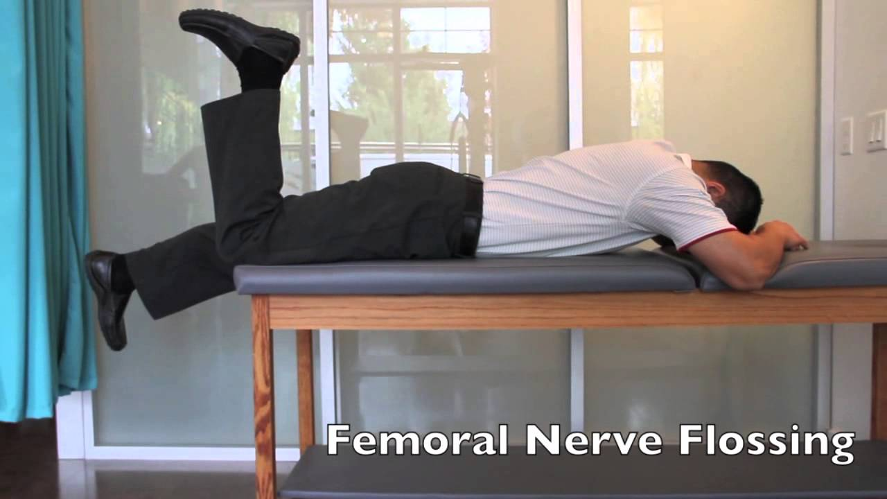 femoral nerve flossing - youtube, Muscles