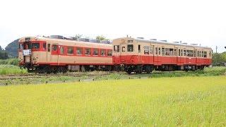 【いすみ鉄道】 キハ30 62 試験走行 幕回し・前面展望! 急行列車と並ぶ!