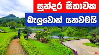Seethawaka Wet Zone Botanic Gardens (avissawella) -  Best Things To Do In Colombo - Travel Guide