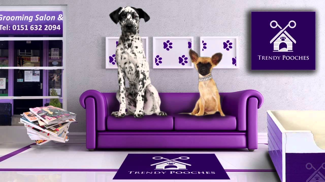 TRENDY POOCHES DOG GROOMING SALON WIRRAL COMMERCIAL MOVIE