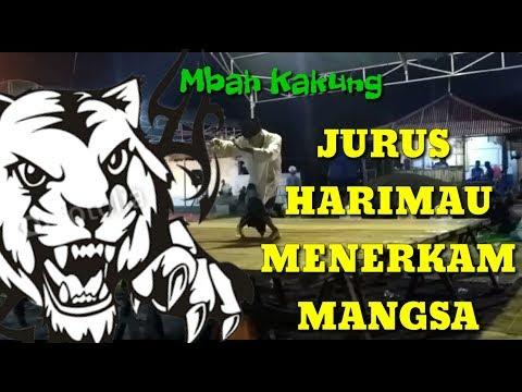 Saluut!!! Kakek 75 tahun Ini Peragakan Jurus Harimau   Pencak Silat Indonesia   Bangkalan Madura