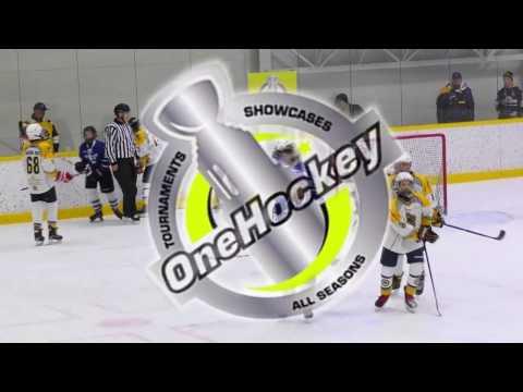 OneHockey FINLAND Selects 05  VS.  HK SRŠNE Košice SLOVAKIA  // 2.tr  6:5 //  15.4.2017