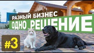 Эко-домики из минибруса. Бизнес в Крыму