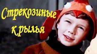 Стрекозиные крылья (1968). Детский фильм | Золотая коллекция