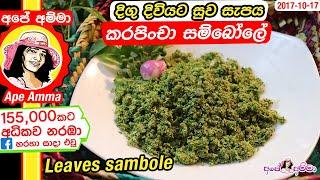 දග දවයට සව සපය කරපච සමබල Curry leaves sambole by Apé Amma