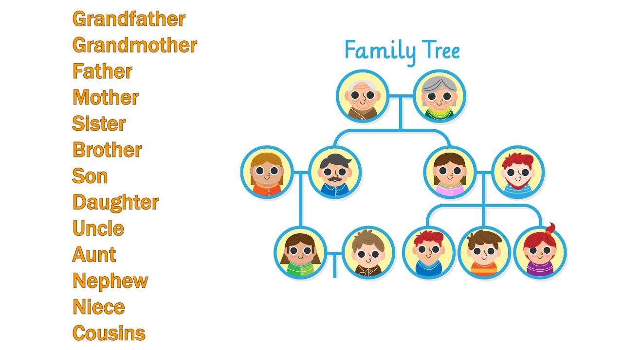 شجرة العائلة بالانجليزية 3