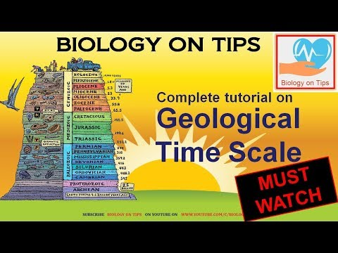 Biology on Tips: Geological Time Scale (How Dinosaurs went extinct)