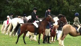 Burstow Park Equestrian Centre Summer Show 2012