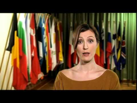 EU President of the European Council - a definition