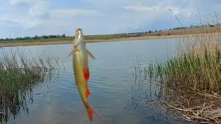Весна 2020 рыбалка на реке Берда