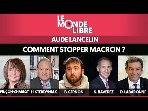 LE MONDE LIBRE #2 : COMMENT STOPPER MACRON ?