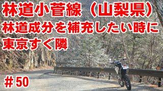 【小菅村】林道小菅線~林道成分は足りてる?【白糸の滝見学】