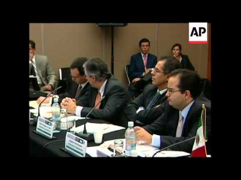 Mexican, US, Canadian officials discuss collaboration on swine flu