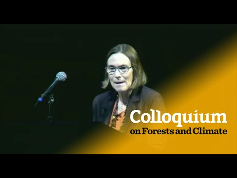 Colloquium on Forests & Climate: Cheryl Palm on the agriculture-forestry nexus